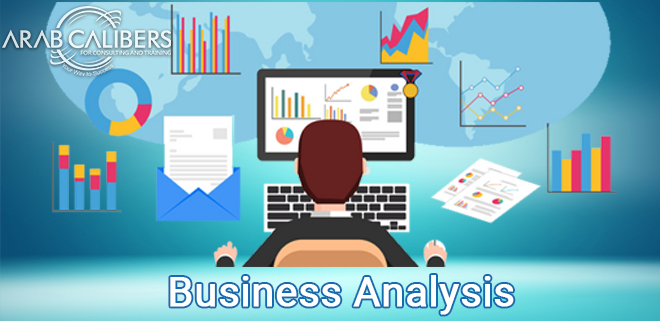 Software Business Analysis